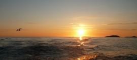 Chancen sind wie Sonnenaufgänge