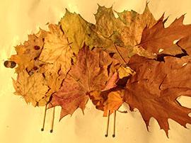 Herbstbasteln im Pflege- und Betreuungsbereich